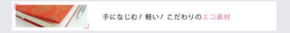 eco_link